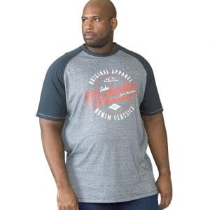 D555 Kingsize Gunner T-Shirt Teal Stripe