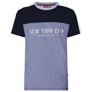 49e7e70c D555 Kingsize Alvester Cut & Sew T-Shirt Blue Marl